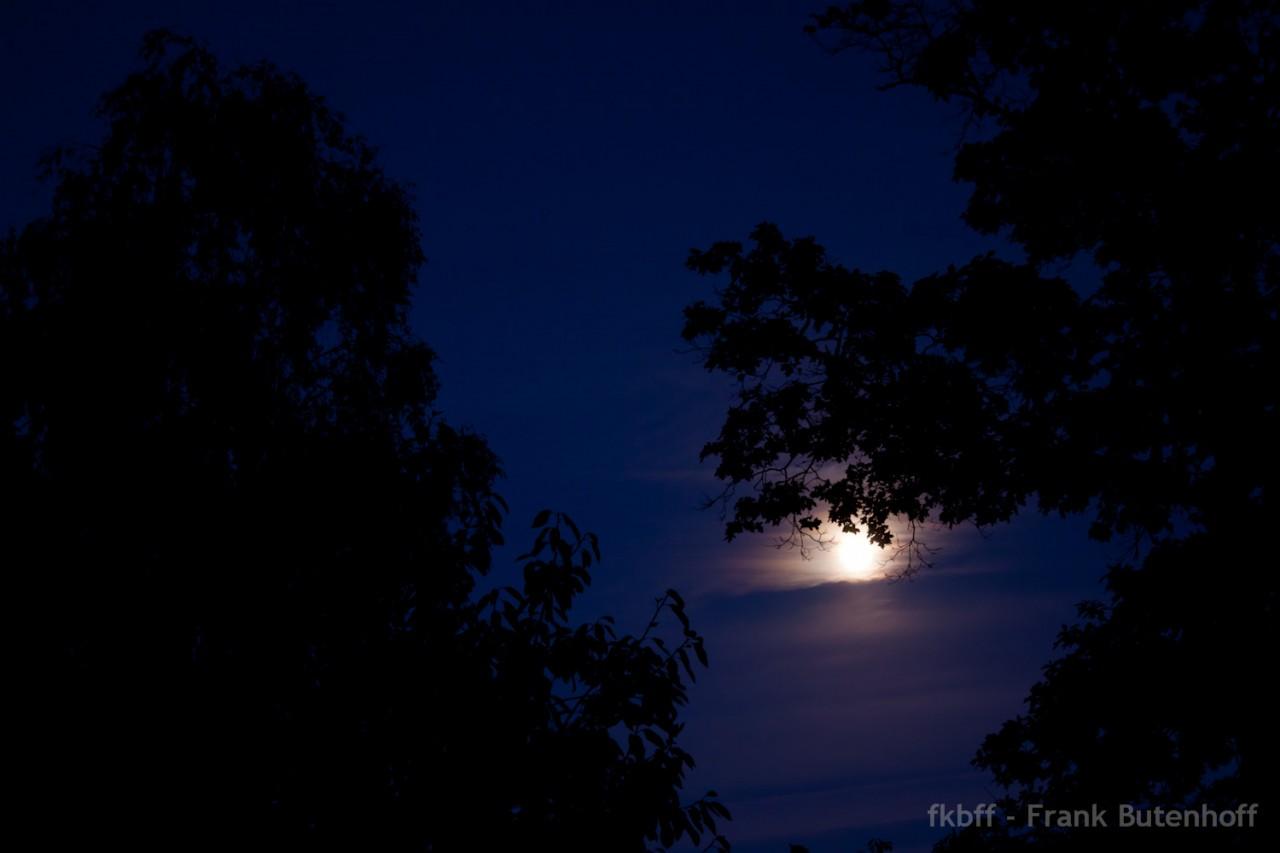 Nacht, Mond