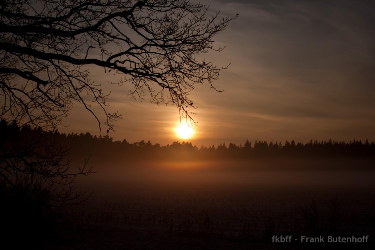 Wintersonne am Abend